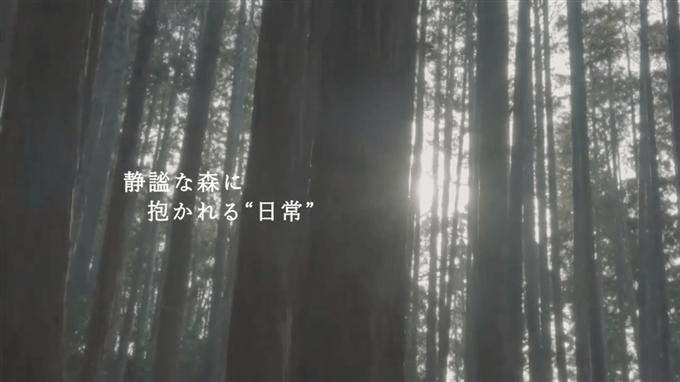 山いちば PR動画